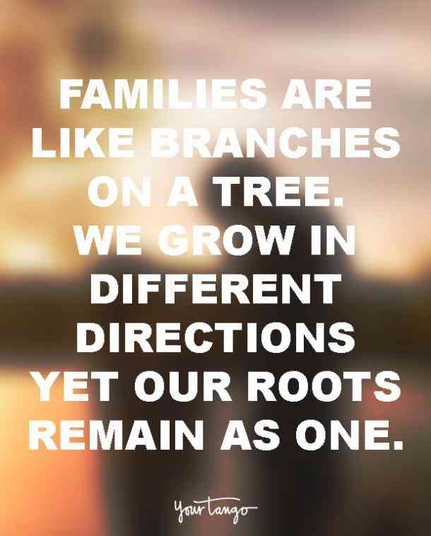 Why Family Is Important Quotes: Family, Like Branches In A Tree, We All Grow In Different