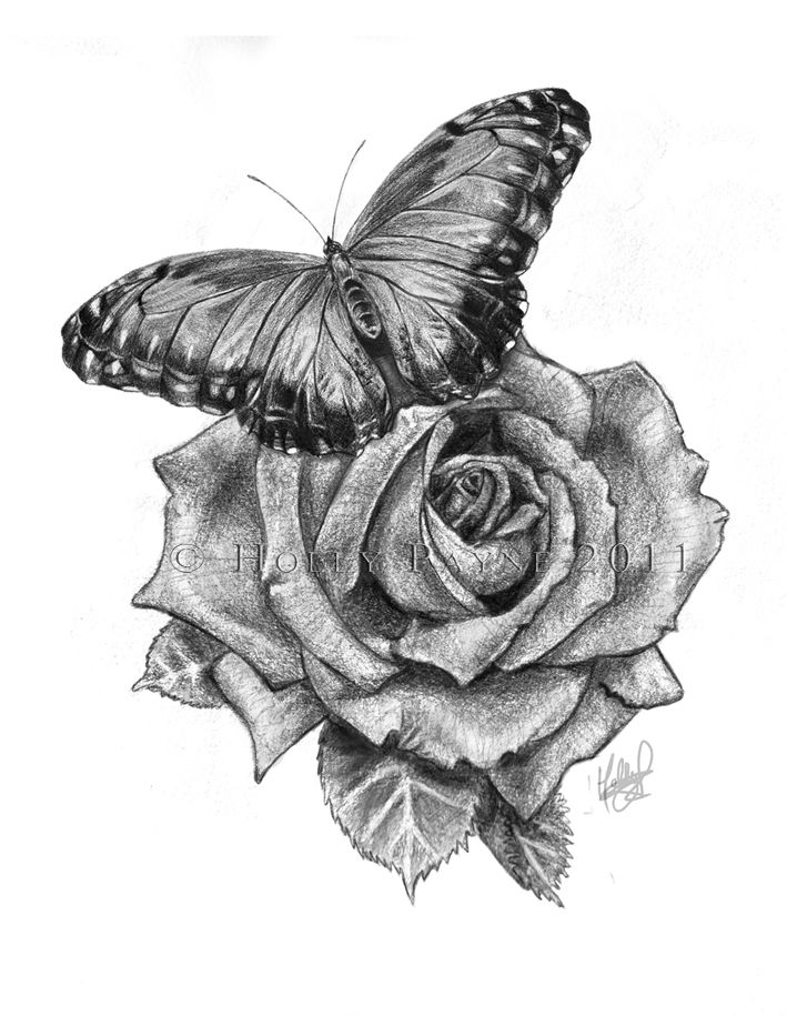 Grey Ink Realistic Rose & Butterfly Tattoo Sketch