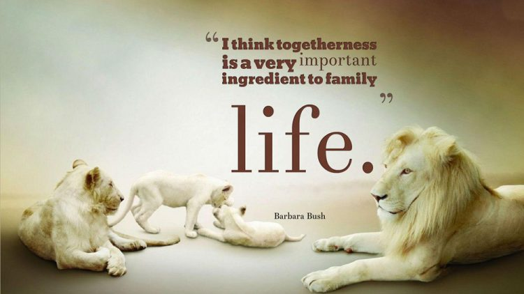 I Think Togetherness Is A Very Important Ingredient To Family Life