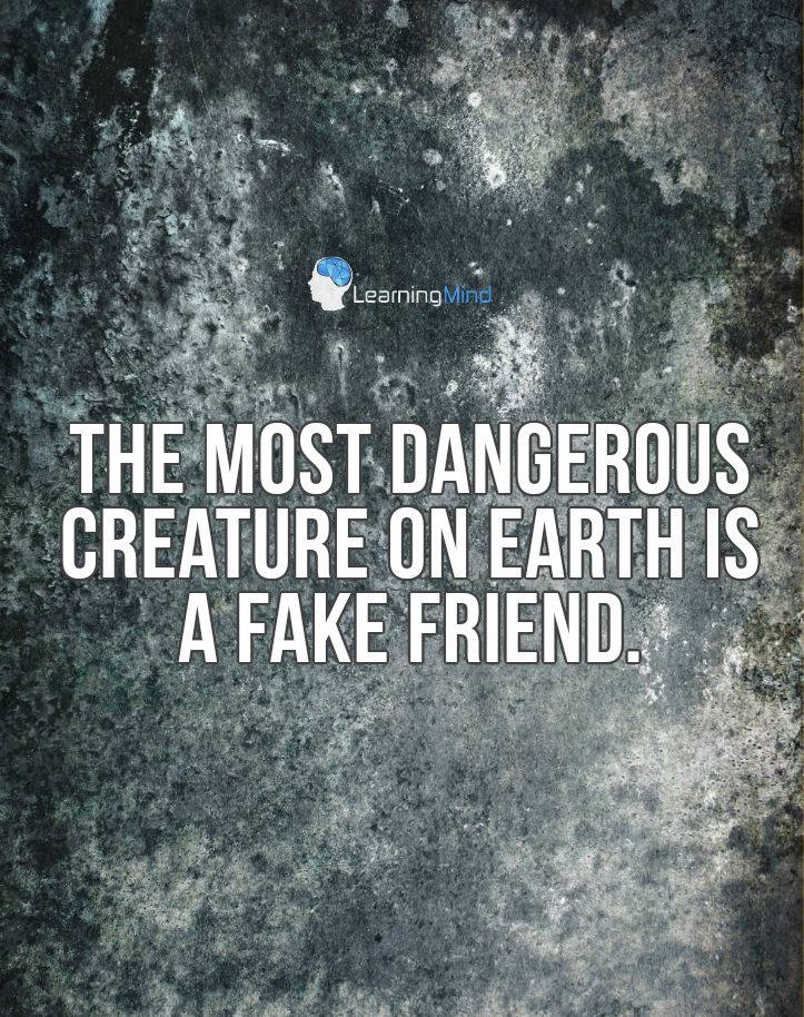 Fake Friends Quotes | Fake Friends Quotes Askideas Com