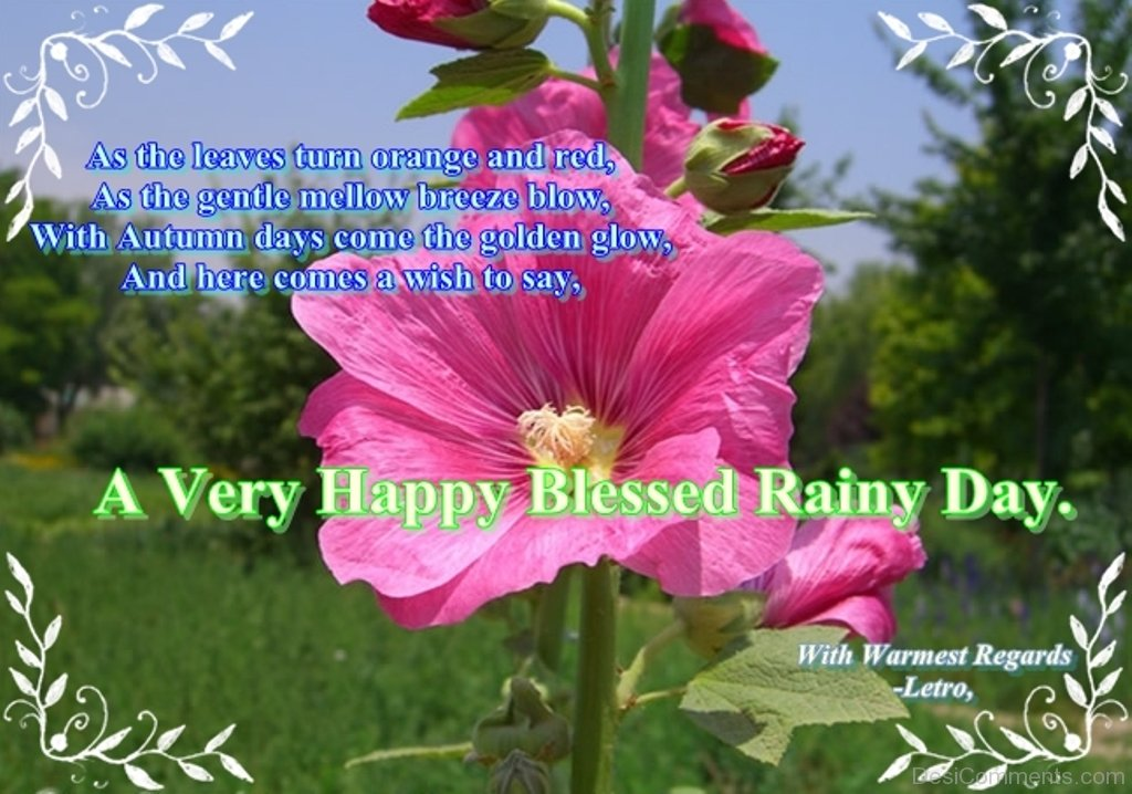 a very happy blessed rainy day