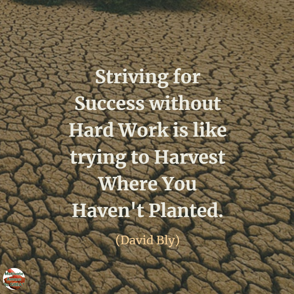 striving for success without hard work is like trying to ...