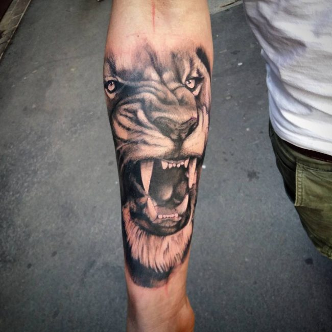 Grey Shaded Roaring Half Face Lion Tattoo On Forearm