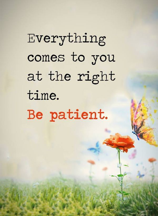 everything comes to you at the right time be patient