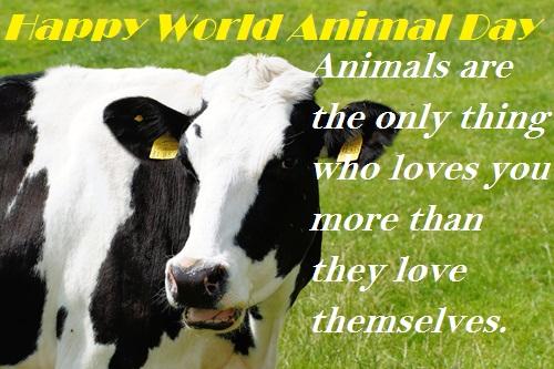 happy world animal day quote
