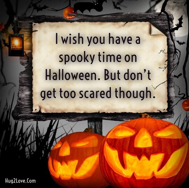 i wish you have a spooky time on halloween. but don't get too scared though