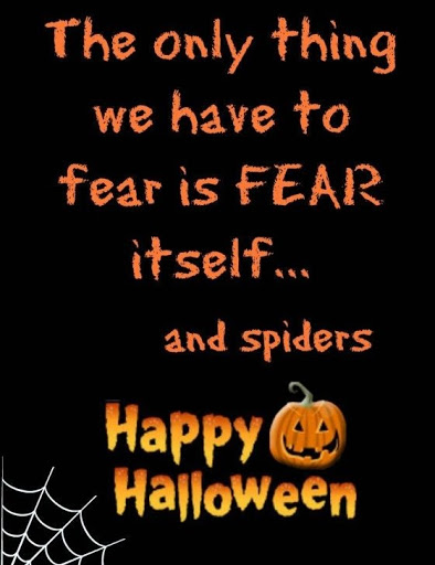 the only thing we have to fear is fear itself and spiders happy halloween