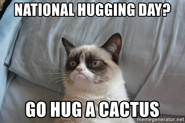 National Hugging Day Go Hug A Cactus Meme