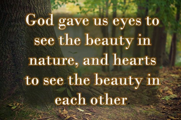 god gave us eyes to see the beauty in nature and hearts to see