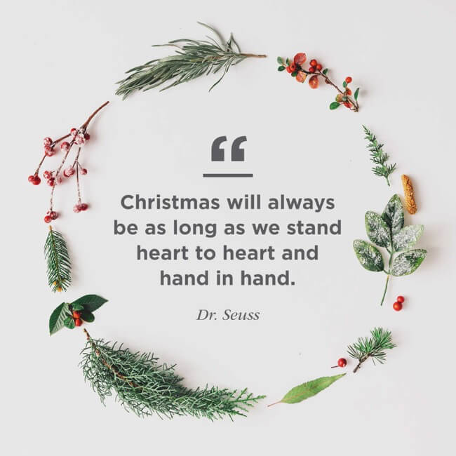 dr. seuss quote for merry christmas